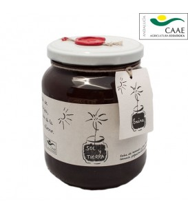 Organic Oak Honey